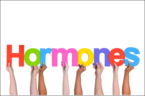 Hormoni sexuali masculini si feminini